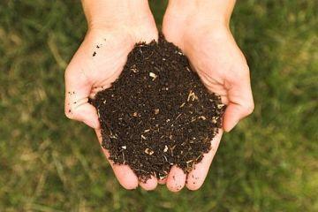 Soil2