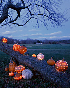 0101_pumpkinsnight_l