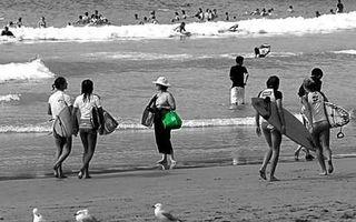 Greenbagmanly_wideweb__430x269,1