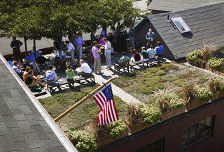 Centerbrook Green Roof