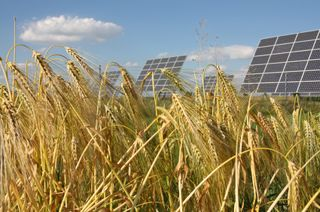 SolarpanelsLarge