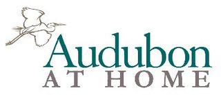 AudubonAtHome_370x160