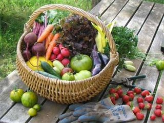 Organic-vegetables2-saidaonline