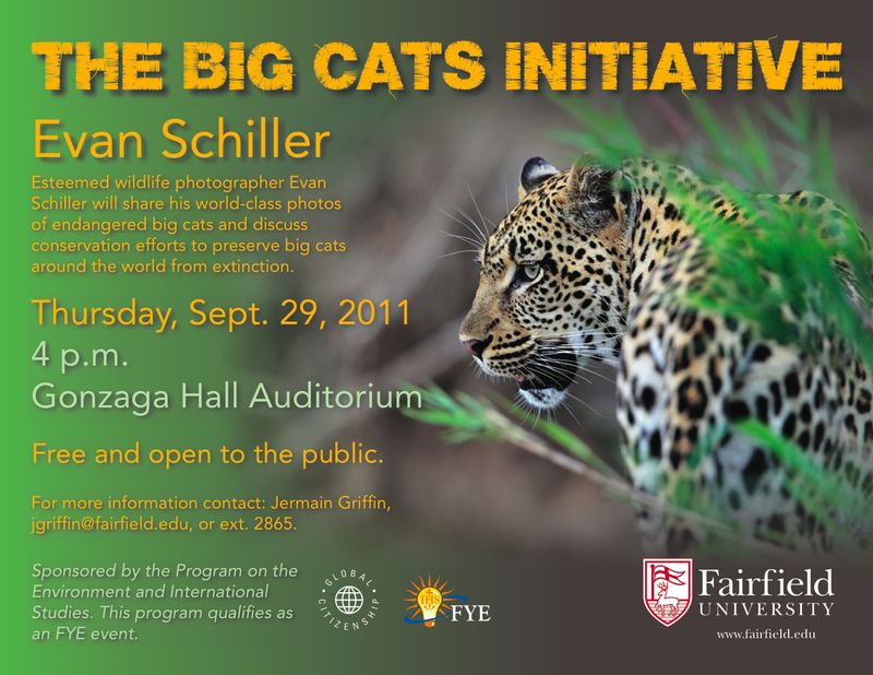 Big Cats Initiative Poster_September 29