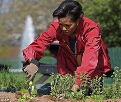 Michelle-Obama-garden-1