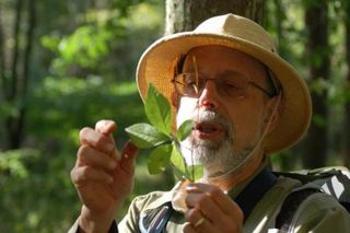 Wildman-with-spicebush-e1404866031124