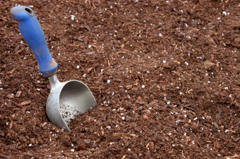 Compostsoil