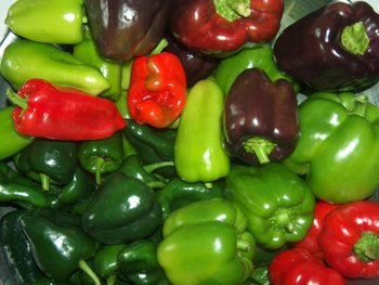 Peppers782256_3